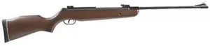 gamo_hunter_440